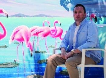 Flamingo Wide Colour (PRE-CROP HD)