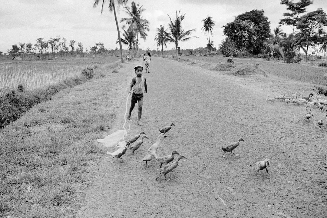 Boy with ducks, Bali, 1978, Courtesy the artist and BlainSouthern, © Wim Wenders