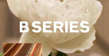 b-series-burberry